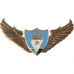 Нагрудный знак ВДВ крылья парашют звезда металл