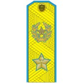 Погоны МО генерал армии нового образца голубой кант парадные трапеция на китель золото