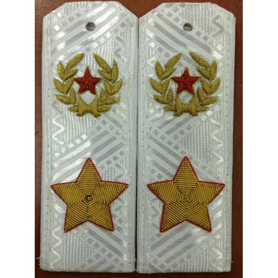 Погоны МО генерал армии нового образца парадные на белую рубашку