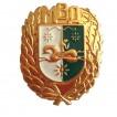 Кокарда МВД Абхазии