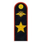 Погоны генерал Полиции РФ повседневные на китель и куртку