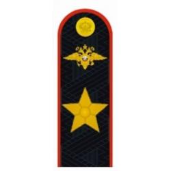 Погоны Полиция генерал Полиции РФ повседневные на китель и куртку