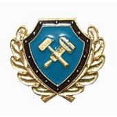Эмблема петличная Технадзор субъектов РФ