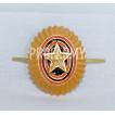 Кокарда РА металлическая малая золотая ФМ-11