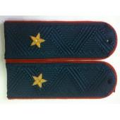 Погоны генерал-лейтенант внутренней службы ФССП на голубую рубашку