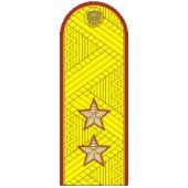 Погоны УИС (ФСИН) генерал-лейтенант на китель парадные метанит