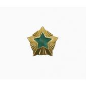 Знак различия Звезда Охотнадзор малая металл