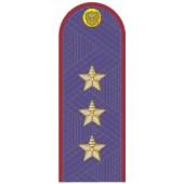 Погоны УИС (ФСИН) генерал-полковник на китель повседневные
