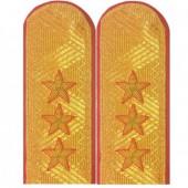 Погоны Полиция генерал-полковник с двумя шлевками парадные