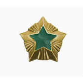 Знак различия Звезда Охотнадзор большая металл