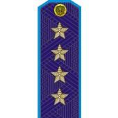 Погоны МО генерал армии старого образца голубой кант повседневные со скосом на китель
