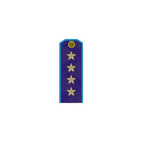 Погоны генерал армии старого образца голубой кант повседневные со скосом на китель