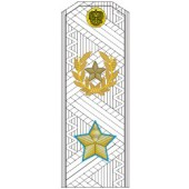 Погоны МО генерал армии нового образца голубой кант парадные на белую рубашку