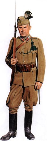 Форма вспомогательных войск Венгрии Второй мировой