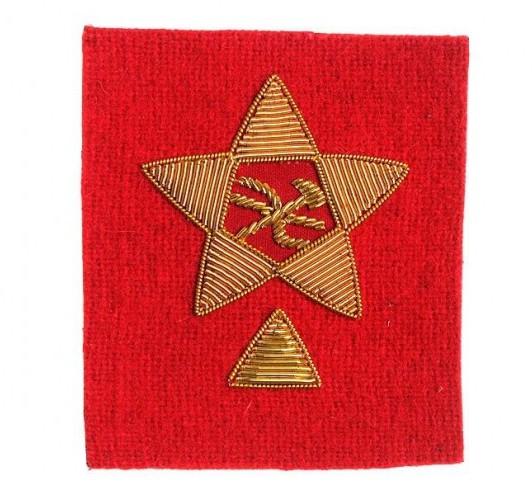 Нарукавные знаки Красной армии