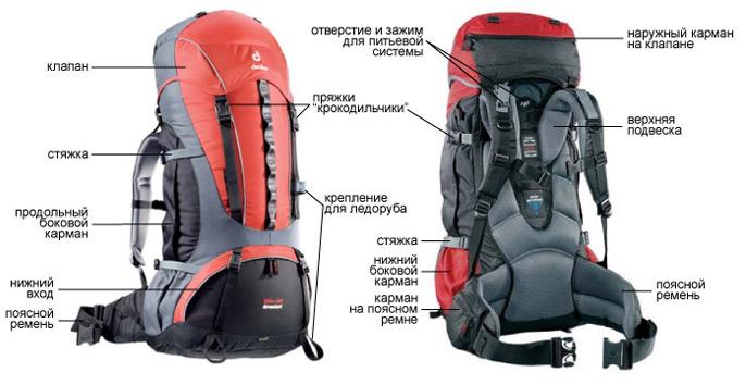 Рюкзаки бывают разные обыкновенные городские универсальные альпинистские рюкзак head pro backpack