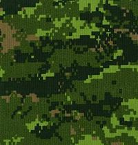 The CADPAT is an example of digital camouflage pattern