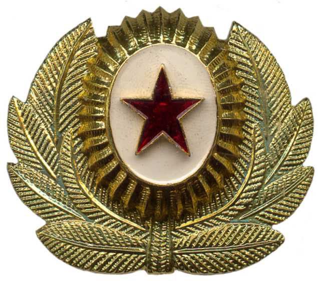кокарда российской армии фото