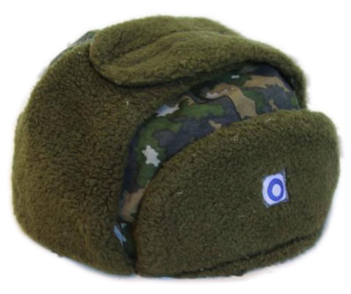 сообщили региональном зимняя шапка збройних сил фото приколы интернациональное