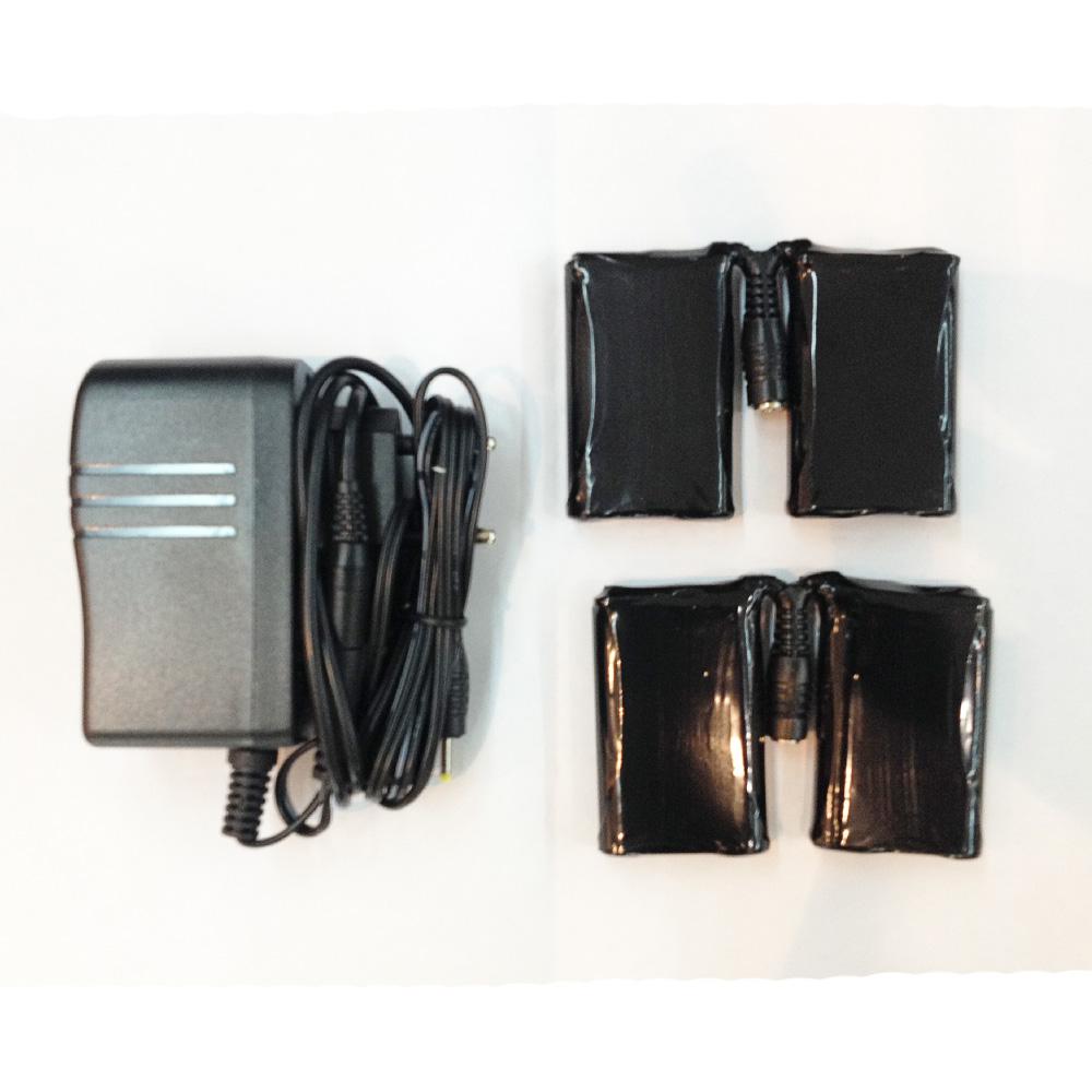 Аккумуляторы с зарядным устройством Elan 2016-17 BP ALPINA NN EU - артикул: 802400423