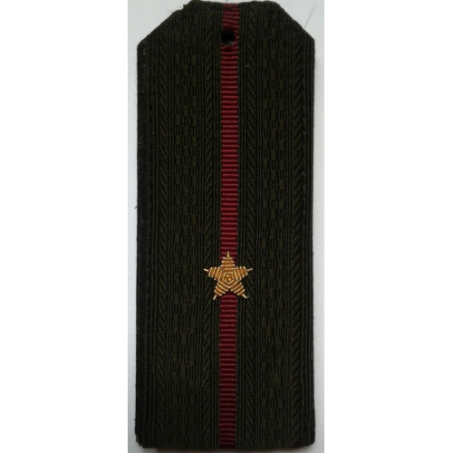 Погоны Росгвардия вышитые Младший лейтенант повседневные