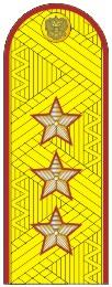 Погоны УИС (ФСИН) генерал-полковник на китель парадные метанит