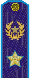 Купить Погоны МО генерал армии нового образца голубой кант повседневные трапеция, Форма одежды
