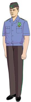Рубашка Россельхознадзор с коротким рукавом (пошив по меркам), Индивидуальный пошив - арт. 518190232