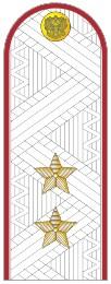 Погоны УИС (ФСИН) генерал-лейтенант на белую рубашку повседневные