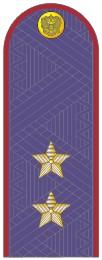 Погоны УИС (ФСИН) генерал-лейтенант с хлястиком повседневные