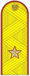 Погоны генерал-майор ФСИН на китель парадные метанит