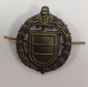 Эмблема петличная ФСО полевая металл