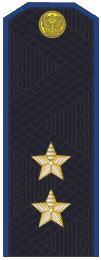 Погоны ФСБ генерал-лейтенант с хлястиком повседневные