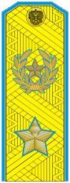 Купить Погоны МО генерал армии нового образца голубой кант парадные трапеция на китель золото, Форма одежды