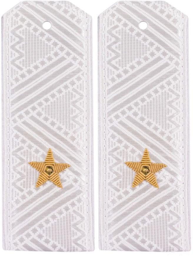 Погоны Росгвардия (ВВ МВД) генерал-майора на белую рубашку повседневные