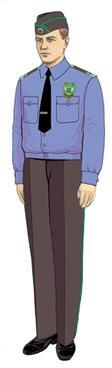 Рубашка Россельхознадзор с длинным рукавом (пошив по меркам), Индивидуальный пошив - арт. 518200232