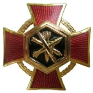 Chemical disarmament honor medal.jpg