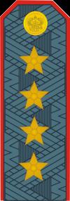 Новые погоны и звания полиции МВД РФ