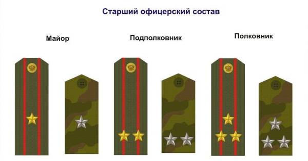 Как определить звание по звездам на погонах